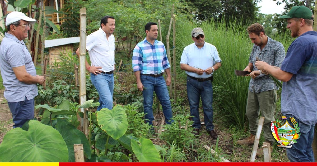 La agricultura orgánica tiene su espacio en Ricaurte con fines de negocio