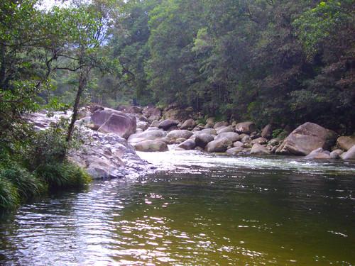 Mossman Gorge.