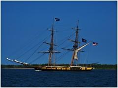 Tall Ship - U.S. Brig Niagara