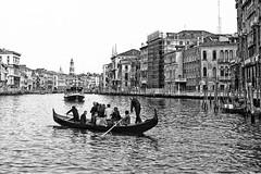 Venezia 1982