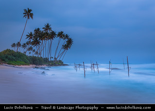 Sri Lanka - Weligama - Fishing town on southern coast along the Indian Ocean - Stilt Fisherman location at dusk - Twilight - Blue hour