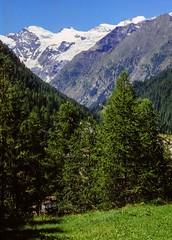 Un'altavia sui ghiacciai delle Alpi Pennine (luglio 1993)