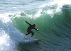 Wild Wild Surf