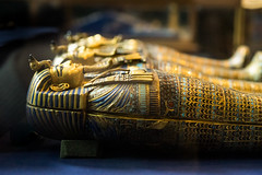 King Tut Organ Coffins