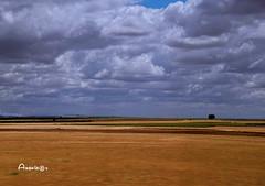 Castilla_La Mancha