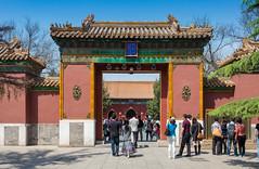 65612-Beijing-Lama-Temple