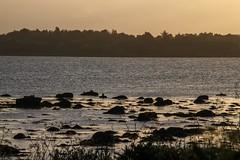 Meer - Sea