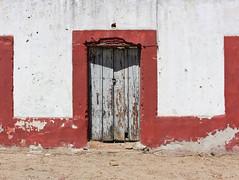 Cape area, Baja, Mexico