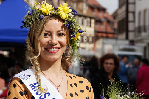 Nikon D 750 visit France including Alsace