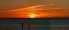 Breathtaking Fiery Sunset & Dusk Fill Tampa Bay Sky -  IMRAN™