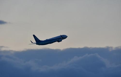 ANA Boeing 737-881 at NGO