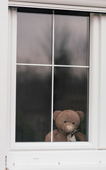 Lonely teddy bear looking through the window