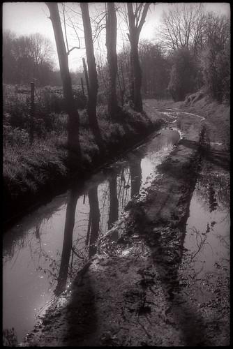 Chemin de campagne après la pluie