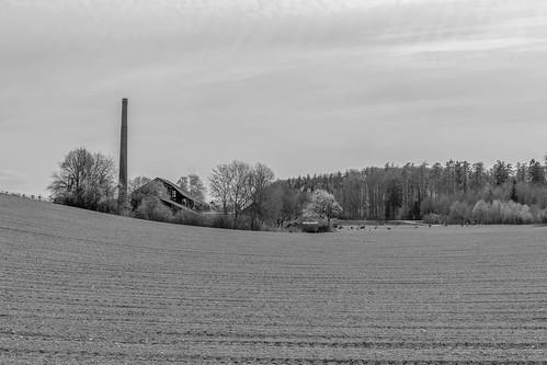 La Tuilière, Cossonay