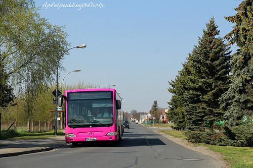 Bunte Buswelt - Querfurt