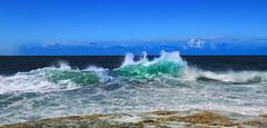 Iluka waves