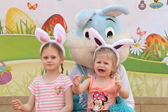 EGGcellent Family Adventure (Easter bunny) - U.S Army Garrison Humphreys, South Korea APR 20, 2019