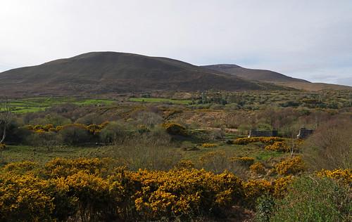 Irish vista off the N70