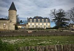 Chateau in Sauternes - Photo of Landiras