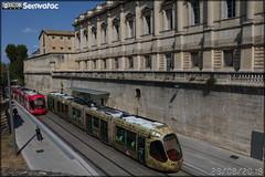 Alstom Citadis - Tam Montpellier 3M (Transports Alternatifs de Montpellier Méditerranée Métropole) n°2042