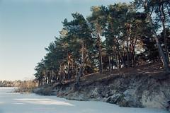Замороженный берег / Frozen coast