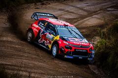 0289 - WRC Rally Argentina 2019