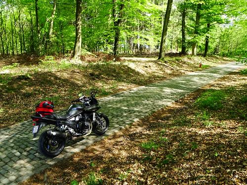 Bois de Haute Heuval