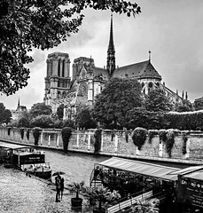 Notre Dame Black and White