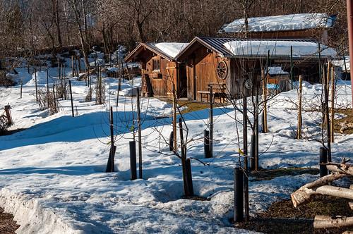 Matin d'hiver (Vandans, Osterreich)-100