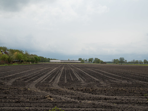 Landschap bij Een