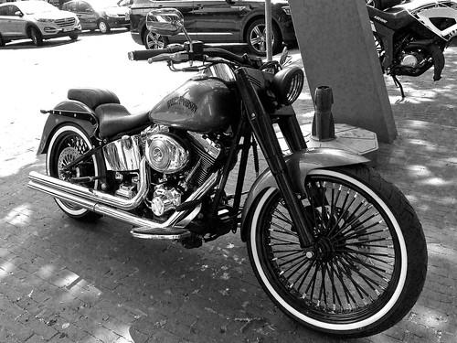 Seven Hills Custom / Harley Davidson / Panningen