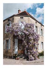 Fleurie... - Photo of Gissey-sous-Flavigny