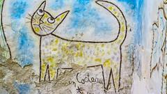 Le Chat de Jean Cocteau (1950)