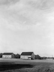 Farmland of Calvert County