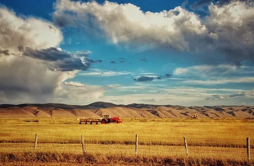 Working the fields in Utah