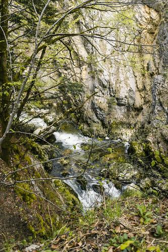 Wanderung entlang der Areuse - Champ-du-Moulin-Neuenburg-Schweiz-CH190424120742-©patrikwalde_com.jpg
