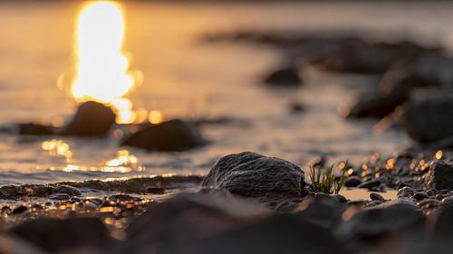Wet sunset | SONY ⍺7III & Sigma FE 1.8/135 Art
