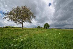 Printemps pluvieux - Photo of Oberhoffen-lès-Wissembourg