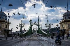 <20190401> Amsterdam & Hungary-Budapest