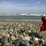 Elmo and the Big Rock