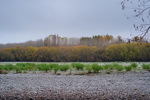 Autumn river bed