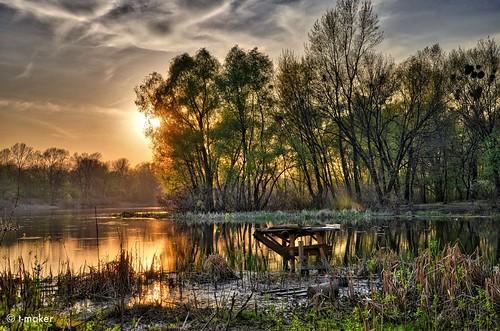 Light of Spring Sunset