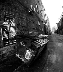Alley Dumpster (Montreal)