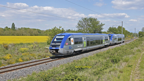 UM X73653 -Normandie- X73556 TER 832778 Mulhouse-Wesserling à Cernay