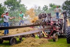 Vintage Tractor Show: 2014 Federalsburg, MD