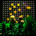 The Little Prince (LEGO minifigure & MOC)