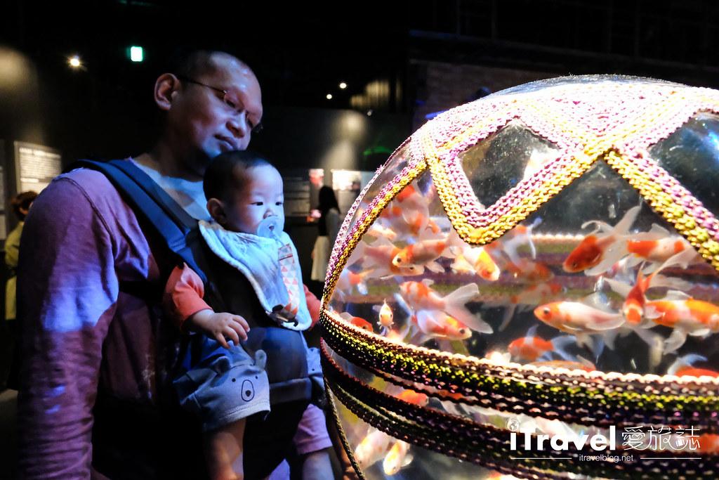 福冈展览推荐 博德金鱼の祭 (19)