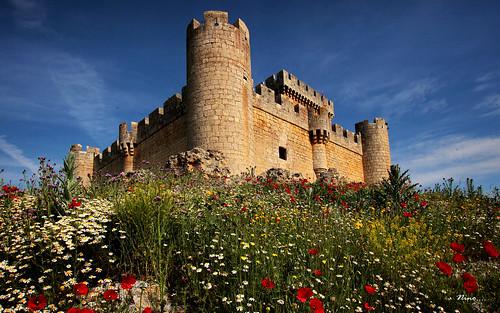 La primavera y el castillo...