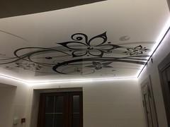 Transparentne i podświetlane sufity21