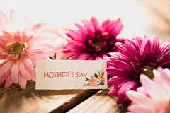 MOTHER'S DAY note with pink flowers